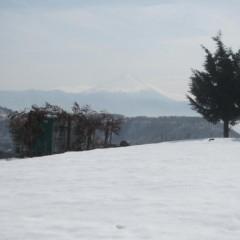 農場はまだ雪が残っています