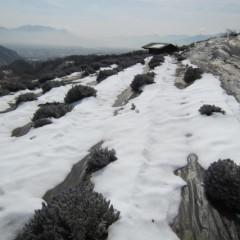スーパー&グロッソの畑も雪融けとなりました
