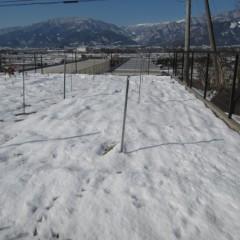 雪融けしたかと安心したのもつかの間、また雪です