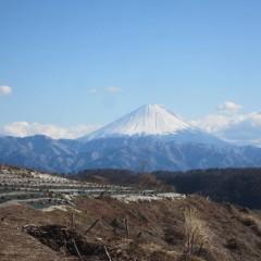 冬晴れの空に霊峰富士が綺麗に望めました