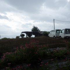 その直後、台風の様な雨と風に襲われました