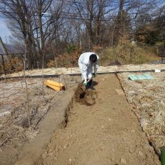 土を掘り起こして硬くなった土を柔らかくして石などを取り除きます