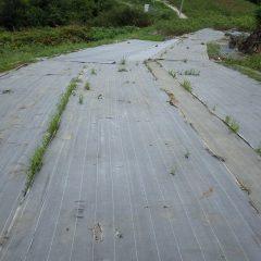 防草シートを張って雑草が出ない様にした畑の種蒔き準備をしました