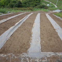 耕運機の入れない畑は土が硬くなっているので掘り返して土の中に空気を混ぜ込みます