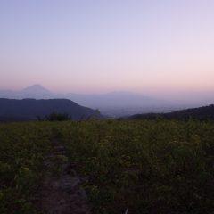 作業が終わると夕映えに富士山が浮かび上がりました