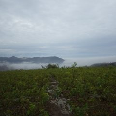 今朝は濃霧で甲府の街は霧にすっぽりと包まれています