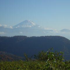 お昼前には晴れて富士山が顔を出し雪も急速に解けて行き