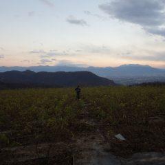 寒風の中、日没まで作業は続きました