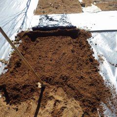 マルチを張る為の溝を掘ります