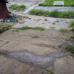 排水溝が機能して昨日の雨水が道路に流れ出た跡は残っていません