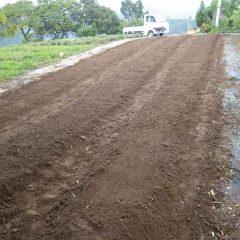 この畑は畝巾を広くして畝を作りました