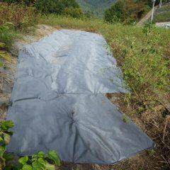 特に雑草が多かった場所を防草シートで覆いました