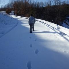 膝下まで埋まる雪の中を徒歩で農場を目指します