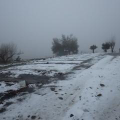雪は昼過ぎに降り止んだので農場へ見回りに行くとこの景色