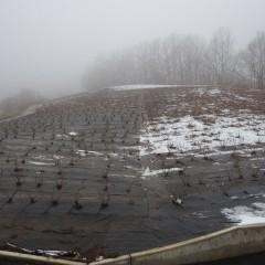 ローズ畑でも日陰はまだ雪が残っています