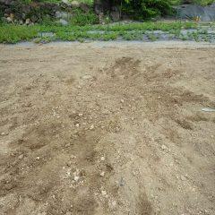 畑に開いた穴を埋め戻して完了