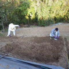 土のかたまりは砕いて細かくします