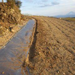 畑の縁に沿って溝を掘ります