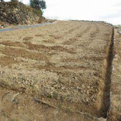 排水溝掘り終了