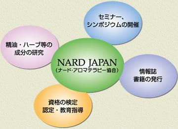 ナード・ジャパンの活動