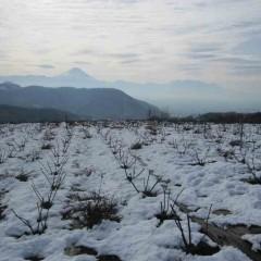 13日に降った雪はまだ積もったままです