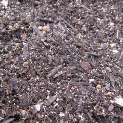 風で飛ばないように培養土の混ぜて蒔きます