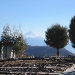 今日も富士山が迎えてくれました