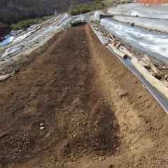 春に備えて畑の整地をしています