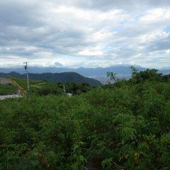 夕方になると台風の影響でしょうか雲が増えて来ました