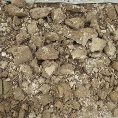 掘り起こした土は大きな固まりになっています