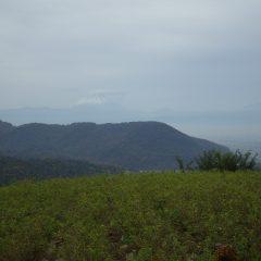 今にも降り出しそうな農場に富士山が霞んでいます