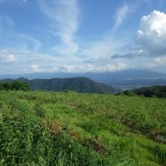久し振りに頭を出した富士山