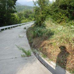 排水溝に草が詰まらないよう草を寄せて作業終了