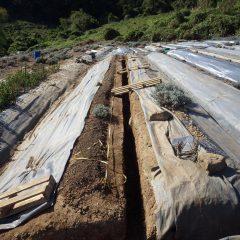 来年に向けて畑の整備も同時進行で行われています