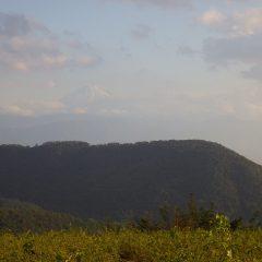 夕方、雲の合間から富士山が顔を見せてくれました