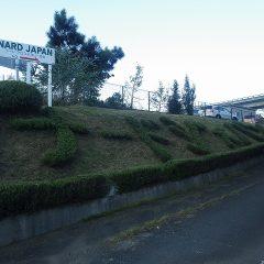 ローズマリーの生垣は綺麗に剪定されてナードジャパンの文字もクッキリ現れました