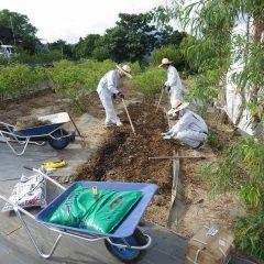 来年のために畑の改良作業も行われています