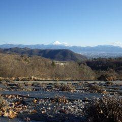 春剪定の終わったラベンダー畑から夕暮れの富士山を眺める