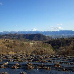 作業が終わると富士山がクッキリと現れていました