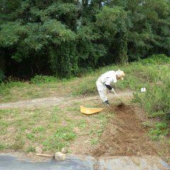 今日も除草作業が続いています