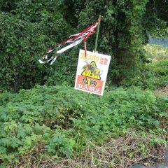 畑の縁にスズメバチの出入りする場所を見つけたので注意看板を立てました
