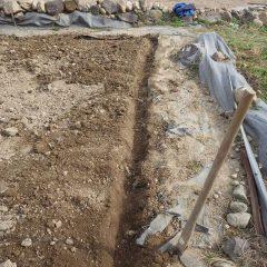 斜面畑の反対側にも雨水排水溝を掘りました