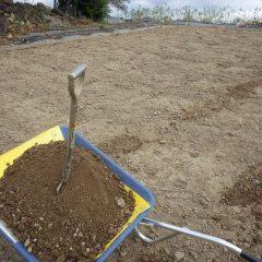 掘った土は雨水で表土が流された場所に埋め戻します