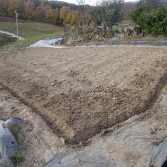 雨で斜面畑の表土が流されないことを願います