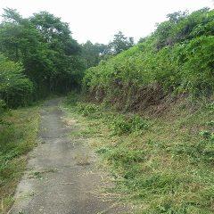 これから始まるラベンダーの収穫に備えて草刈りをしました