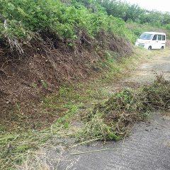刈った草の片付け作業