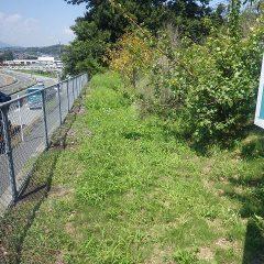 事務局の外周の草刈り作業